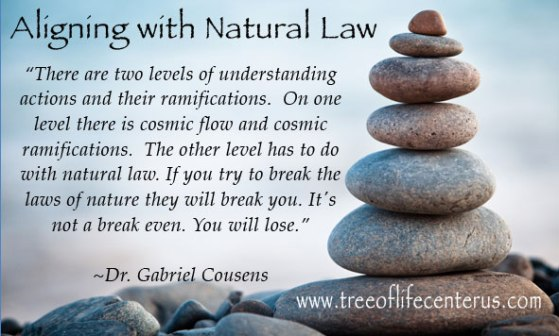 aligning-with-natural-law-gabriel-cousens-quote